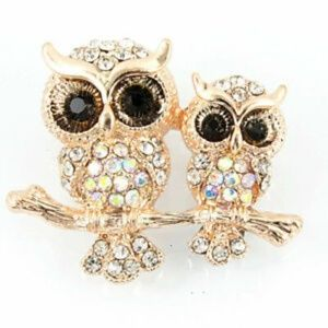 Betsey Johnson Owl Brooch